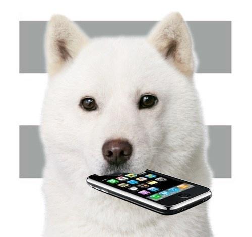 【iphone5】スマートフォン•高価買取してますよ〜☆小平•東大和•花小金井•府中街道沿い