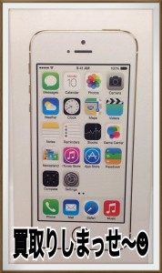 iPhon5s1