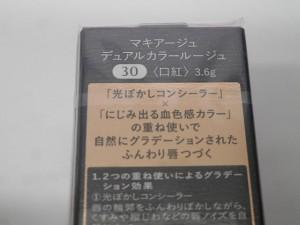 DSCN6909